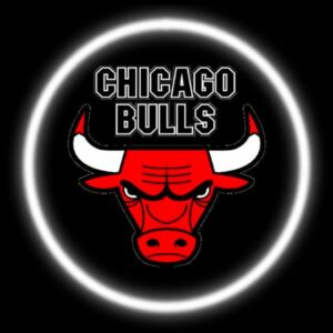 Chicago Bulls Logo Lights