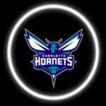 Charlotte Hornets Car Door Projector